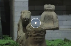 Video: Leizhou's worship of stone dogs