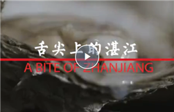 Video: A bite of Zhanjiang