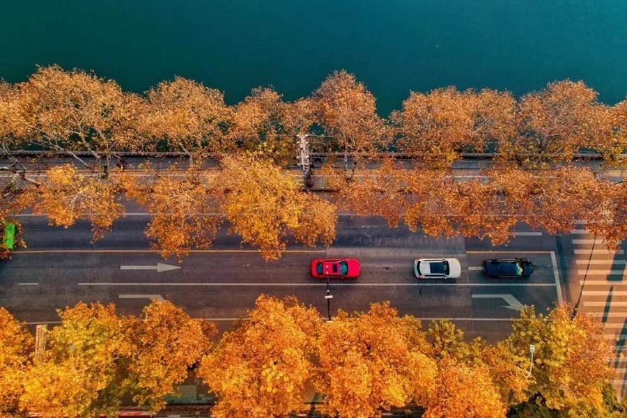 坐标:南湖公园.jpg