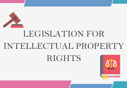 Protection of Intellectual Property in China