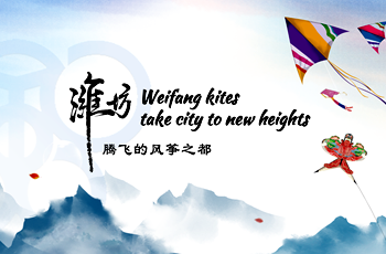 Weifang kites take city to new heights