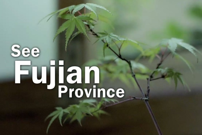 See China in 70 Seconds - Fujian