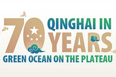 Qinghai in 70 years: Green Ocean on the Plateau