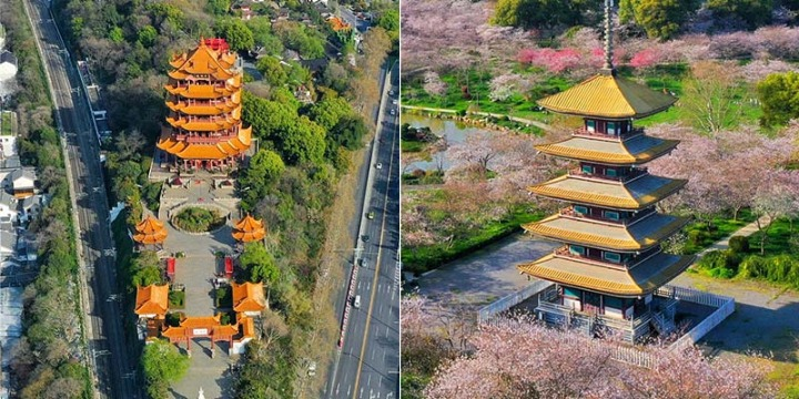 Photos show spring scenery in Wuhan