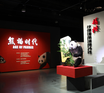 Age of Pandas: The Past and Present of Giant Pandas