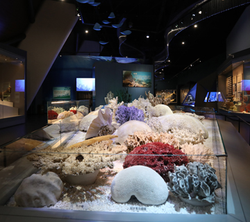 Permanent exhibitions of the National Maritime Museum of China