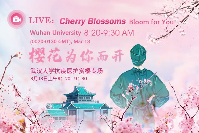 Watch it again: Wuhan welcomes COVID-19 heroes back for cherry blossoms