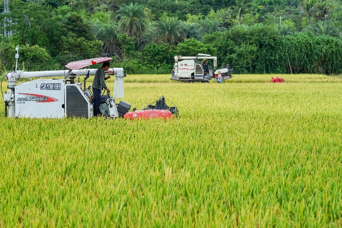 Congress discusses ways forward for seed industry