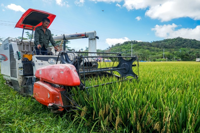 Hainan center to boost seed industry research